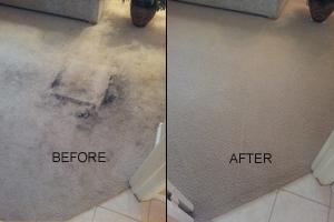 carpet cleaning services phoenix
